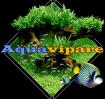 Aquavipare